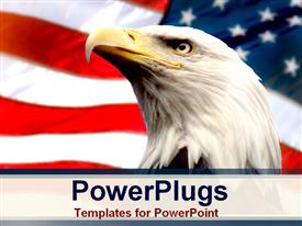 PowerPoint template displaying bald eagle with american flag white background