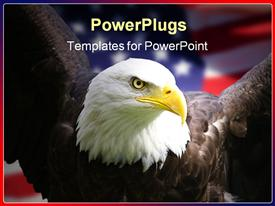 Bald eagle with American flag focus on head  wildlife presentation background