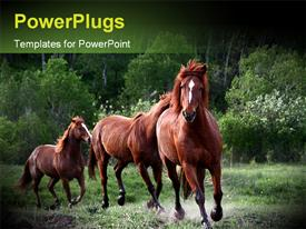 PowerPoint template displaying red horses running in green nature