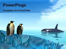 PowerPoint template displaying dolphins are the seaside and shark in sea in the background.