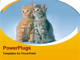 PowerPoint template displaying two black and brown cats together with black background