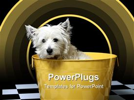 West highland white terrier or westie template for powerpoint