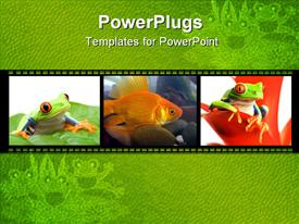 PowerPoint template displaying collage of three depictions of little green frogs on leaves and goldfish in water