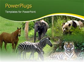 PowerPoint template displaying five tiles showing different animals in a forest setting