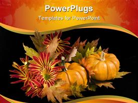 Arrangement of maple leaves chrysanthemums and pumpkins isolated on a black background powerpoint theme