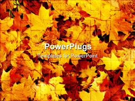 PowerPoint template displaying depiction of autumn season on lots of fallen leaves