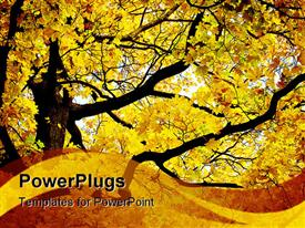 PowerPoint template displaying a beautiful tree in autumn with place for text