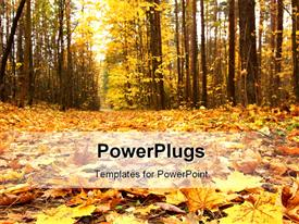 PowerPoint template displaying a lot of fallen leaves with trees in the background