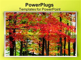 PowerPoint template displaying autumn landscape view in Michigan upper peninsula