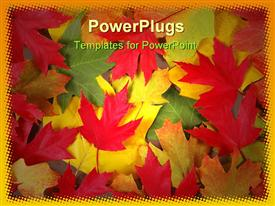 PowerPoint template displaying colorful fall leaves of various trees on the ground