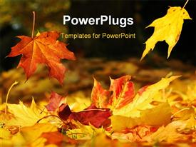 PowerPoint template displaying two leaves falling down on a meadow covered with colored autumn leaves
