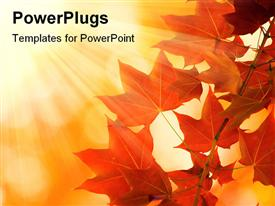 PowerPoint template displaying a branch with brown leaves in an autumn season