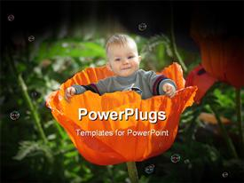 PowerPoint template displaying little baby sitting in a poppy flower