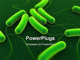 PowerPoint template displaying close up of coli bacteria in the background.