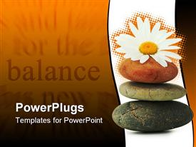 PowerPoint template displaying atmosphere Zen three stones and a daisy flower in the background.