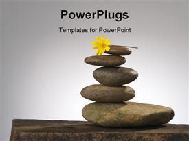 PowerPoint template displaying balancing river rocks with daisy on top