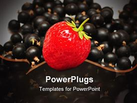 PowerPoint template displaying black currants with a strawberry on top