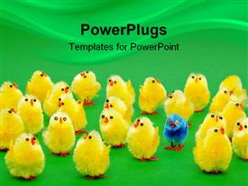 PowerPoint template displaying group of Easter chicks with one odd one standing out