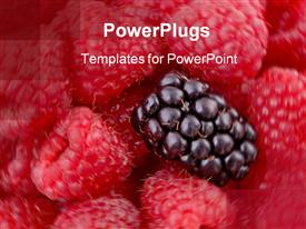 PowerPoint template displaying raspberries on swirled background and one blackberry on top of the raspberries