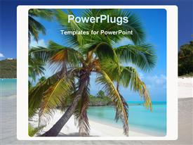 PowerPoint template displaying coconut palm tree beach box ocean landscape, vacation, holiday, travel