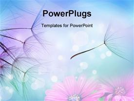 PowerPoint template displaying close up of dandelion seeds in flight against flowers background