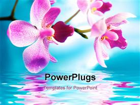 PowerPoint template displaying lavender orchids over reflective water against blue sky background
