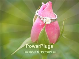 PowerPoint template displaying nice engagement ring on a pink rose in the background.