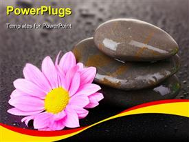 PowerPoint template displaying a number of zen stones with a flower