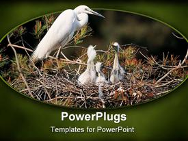 PowerPoint template displaying a mother bird with its children in the nest