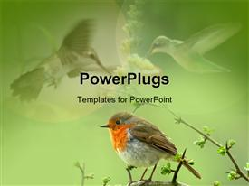 PowerPoint template displaying bird sitting on a branch of a tree
