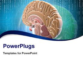 PowerPoint template displaying brain in color background