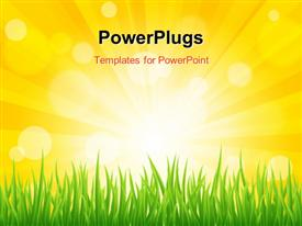 PowerPoint template displaying bright sun effect with green grass field in the background.