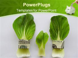 PowerPoint template displaying dollar bills with cabbage leafs and a piggy bank