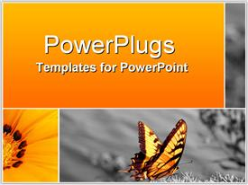 PowerPoint template displaying bus808