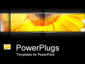 PowerPoint template displaying a sunflower with blackish background and place for text