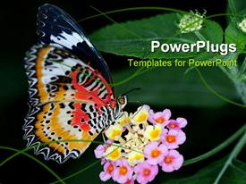 PowerPoint template displaying beautiful butterfly sucking nectar from flower