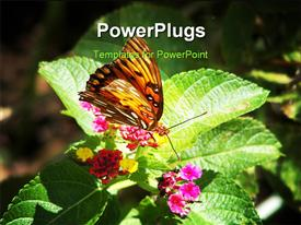 PowerPoint template displaying beautiful butterfly perch on nectar of flower with grunge background