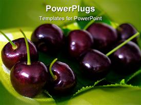 PowerPoint template displaying cherries on cherry leaf on the green background