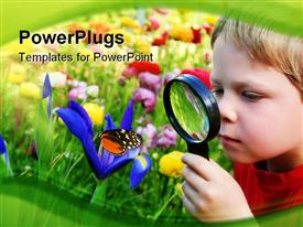 Six years old boy in the spring garden observing a butterfly on flower through a magnifying glass powerpoint template