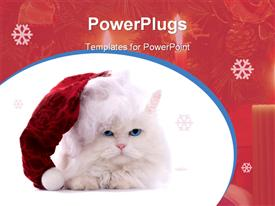 Amusing white fluffy cat in the Santa cap presentation background