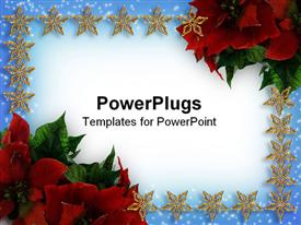PowerPoint template displaying christmas card with stars and flowers
