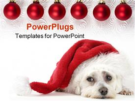 PowerPoint template displaying christmas pooch resting with a Santa hat. have a merry Christmas
