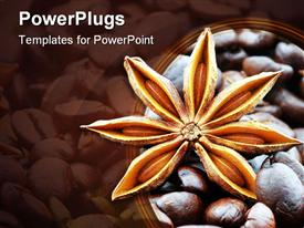 PowerPoint template displaying close up of star anise flower with dark roast coffee beans