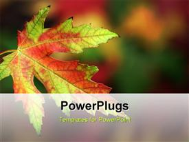 PowerPoint template displaying macro of a multicolored fall leaf in front of a blurred background