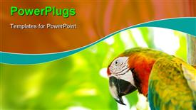 Colorful parrot bird sitting on the perch powerpoint design layout