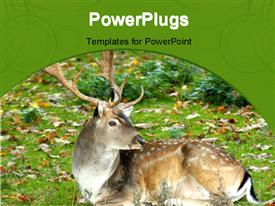 Forest reserve animals one dappled deer wildlife powerpoint template