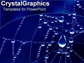 PowerPoint template displaying rain drops on spider web in the background.