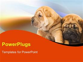 PowerPoint template displaying two puppies leaning against each other on blurry background