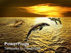 PowerPoint template displaying 3 dolphins leaping out of water at sunset, ocean