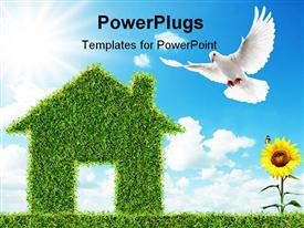 PowerPoint template displaying house made of green grass, sunflower, dove, blue sky, clouds, green living metaphor, sustainable, ecology